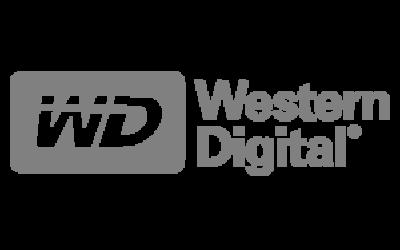 300x300_0000_westerndigital